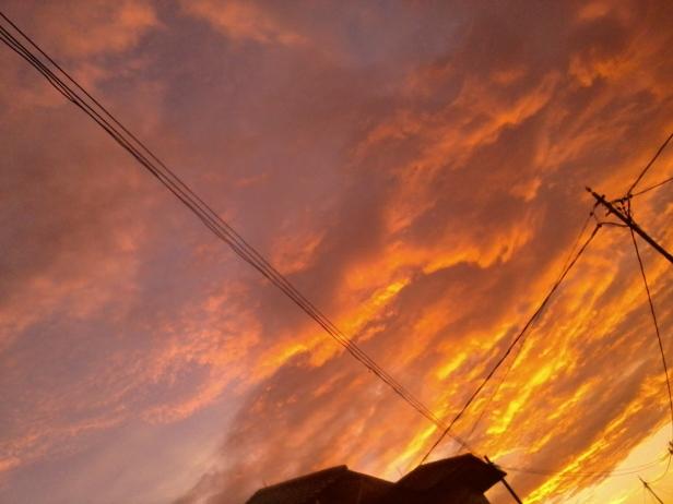 Photo-0056