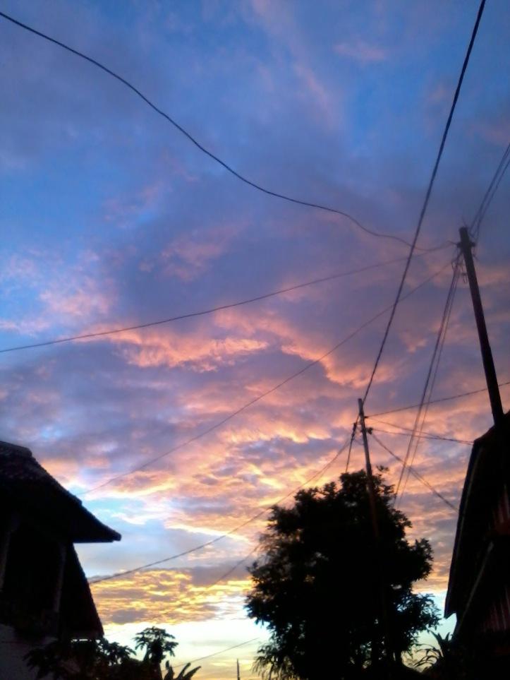 Photo-0059