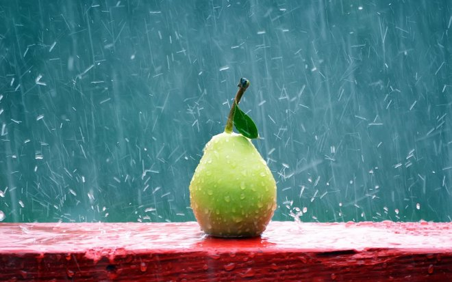 Pear-Rain-Photography_1.preview